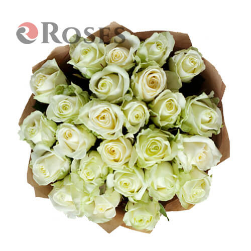 Avalanche 25 roses
